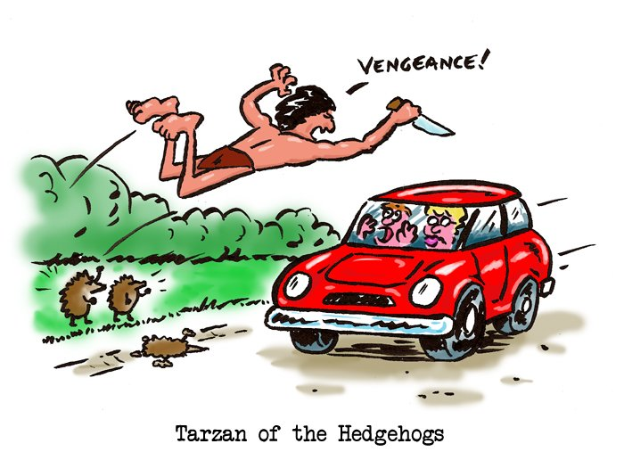 Tarzan Of The Hedgehogs
